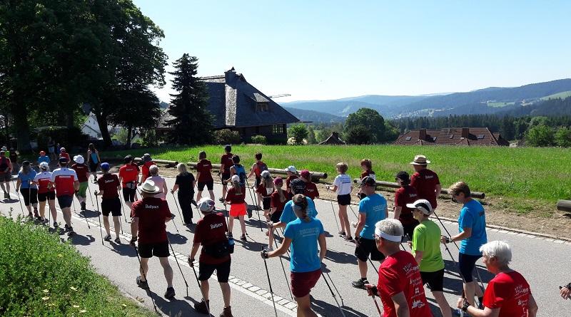 NW-Gipfel / X-Trail 2019